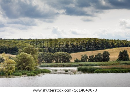 Summer landscape of a large river with reed coast, islets with aquatic plants, yellow farm fields and wild green forest background. Beautiful countryside dark clouds on a windy day