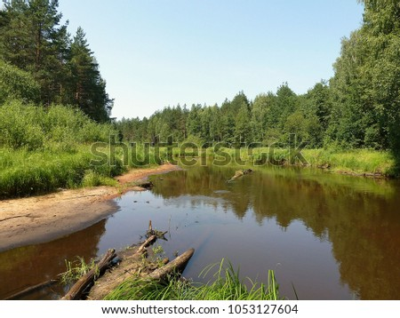 Summer landscape of a quiet river among the green forested shores #1053127604