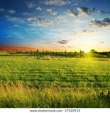summer landscape on a background beautiful sunset #37320913