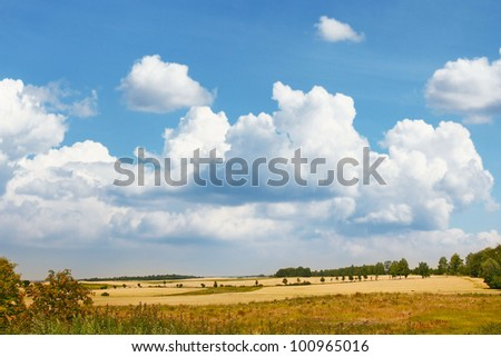 summer landscape, sky and fields