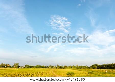 summer landscape sky cloudy