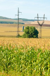 summer landscape, the structure of the energy pillars. Detail of high-voltage electrical pylons against a blue sky, corn field