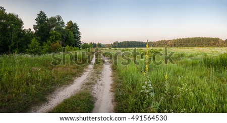 Summer landscape with a road between beautiful meadows, panorama #491564530