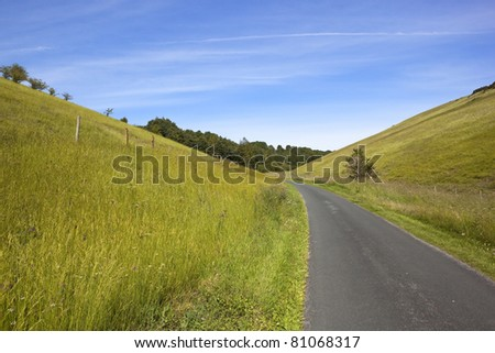 summer landscape with a small country road running through a rural valley with hillside meadows and distant trees