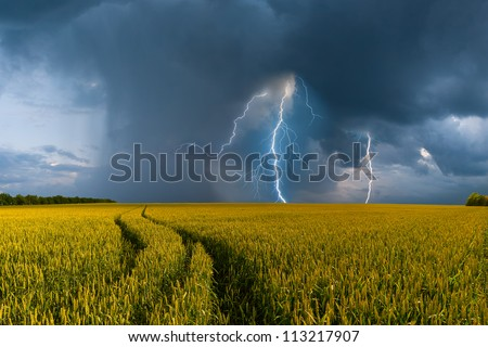 Summer landscape with big wheat field and road, thunderstorm with rain on background