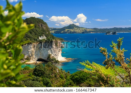 Summer Landscape with Blue Sky on the Pacific Sea Coast, Stingray Bay, Cathedral Cove, Coromandel Peninsula, North Island, New Zealand