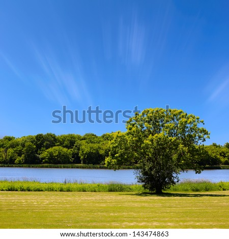Summer landscape with blue sky, trees and river