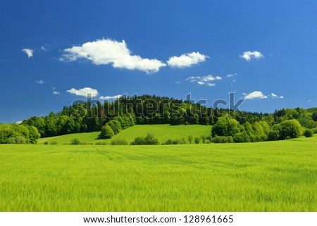 Summer landscape with clear blue sky and field in the foreground