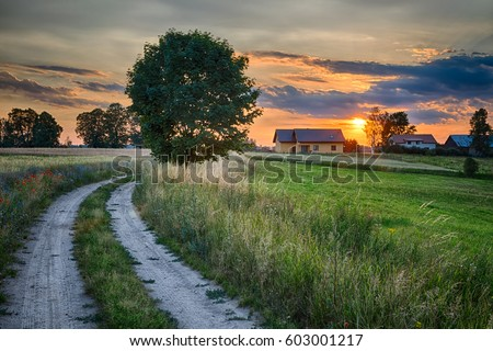 Photo of  Summer landscape with country road and fields of wheat. Masuria, Poland. HDR image