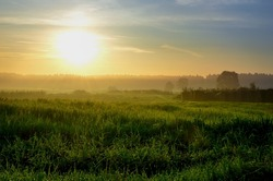 Summer Landscape with field. Green fields and haystacks during the sunset, Poland.