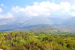 Summer landscape with forest and mountains in Crete, Greece.
