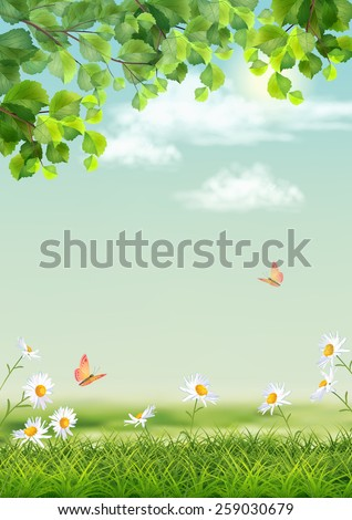 Summer landscape with grass, flowers, tree branches, butterfly