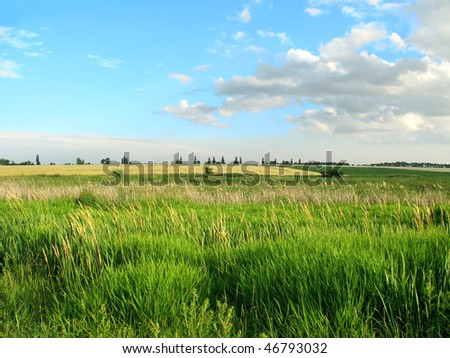 stock-photo-summer-landscape-with-green-grass-and-blue-sky-46793032.jpg