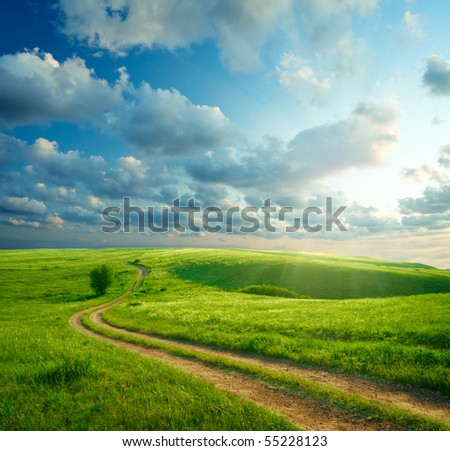 Summer landscape with green grass, road and clouds #55228123