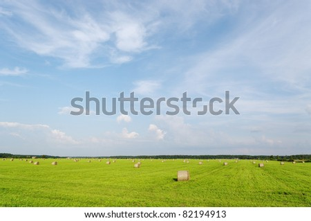 Summer landscape with haystacks on the field.