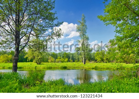 Summer landscape with lonely tree and blue sky