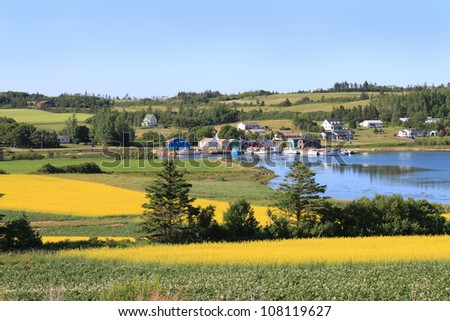 Summer landscape with rapeseed fields and fishing pier with boats  in central Prince Edward Island, Canada