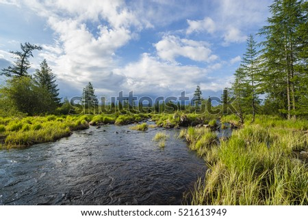 Summer landscape with river, cloudy sky, forest and sun. #521613949