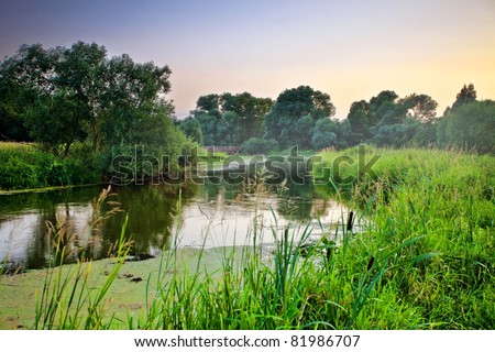 Summer landscape with river on sunset background