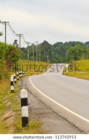 Summer landscape with road and Trees