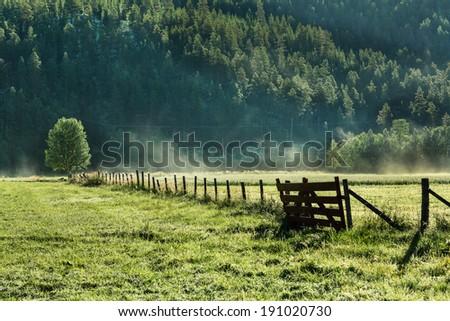 summer landscapes