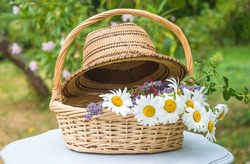 Summer leisure activity concept. Wicker basket with bunch of white daisies, lavenders and straw hat on white table in the green summer garden
