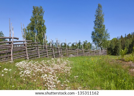 Summer meadow with flowers and a wooden fence in the countryside
