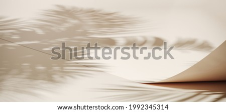 Summer mockup concept for product presentation. Beige paper roll with palm leaf shadow. Clipping path of each element included. 3d rendering illustration.