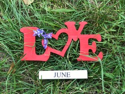 Summer month June concept. Love June colourful sign on natural green background.