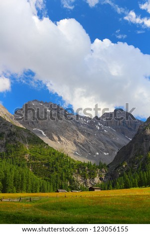 Summer mountain landscape and green meadow in the foreground, Sertig Dorfli, Davos, Switzerland