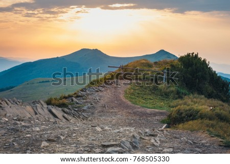 Summer mountain landscape at sunrise with grass and blue sky #768505330