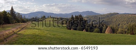 Summer mountainous green meadow with stackes of hay (Slavske village, Carpathian Mts, Ukraine). Eight shots composite picture.