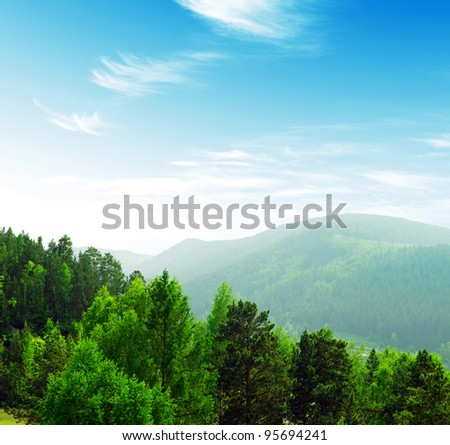 Summer mountains landscape with trees.