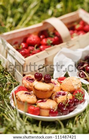 summer muffins - stock photo