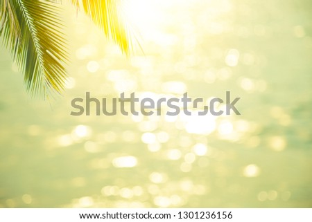 summer nature blur green paim leaf on tropical beach with blue bokeh sunset light background.Copy space for text about vacation business trips surfing in the summer concept.Paradise of beach Asia.