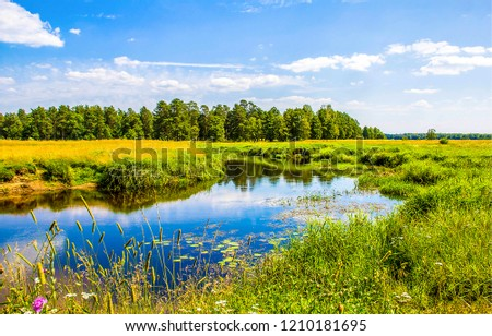 Summer nature river landscape. River grass summer view. Summer green river scene #1210181695