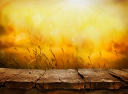 Summer or autumn background. Empty tabletop layout in sunset afternoon. Wood display