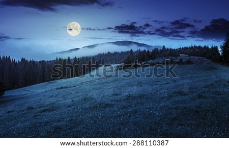 summer panoramic landscape. fog from conifer forest surrounds the mountain top at night in full moon light