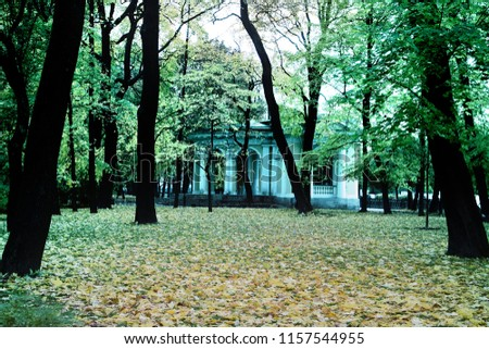 Summer pavilion of classical architecture. Autumn in the Park and on the streets, defoliation, yellow leaves. Walking along the city streets and alleys of the Park