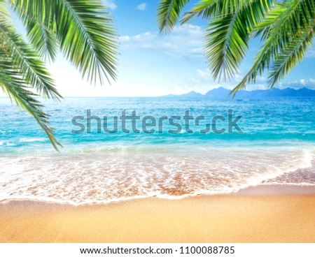 Summer photo of beach and free space for your decoration.  #1100088785