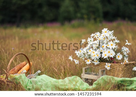 Summer picnic in the meadow on the green grass. Fruit basket, juice and bottled wine, watermelon and bread baguettes. White tablecloth and a bouquet of field daisies. The concept of recreation and #1457231594