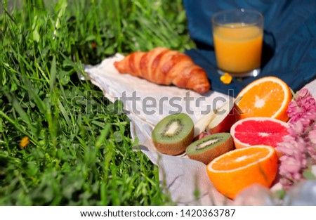 Summer picnic on grass with fresh croissant, ripe orange, kiwi, grapefruit and apple on white and blue napkins