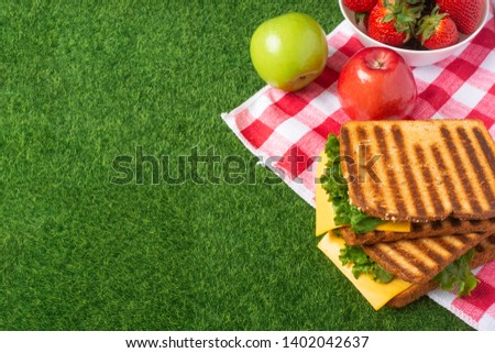 Summer picnic on the grass with checkered tablecloth and healthy food, flat banner
