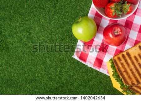 Summer picnic on the grass with checkered tablecloth and healthy food, flat banner, apples, senvich and strawberries with copyspace, romantic getaway, vegan food