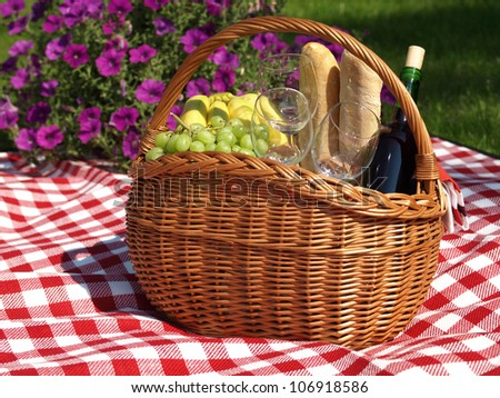 Summer picnic with wine, baguettes and fruits