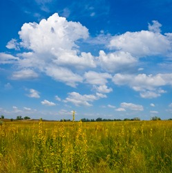 summer prairie with flowers under cloudy sky, summer natural scene