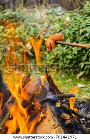 Summer roasting of sausages on fire. Holiday in the countryside. Preparation of food on fire #701441971