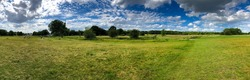 summer rural landscape a panorama with a field and the blue sky. agriculture Epping Forest, London field and the blue sky. Epping Forest, London. High quality photo