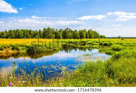 Summer rural meadow pond landscape. Rural summer river weater