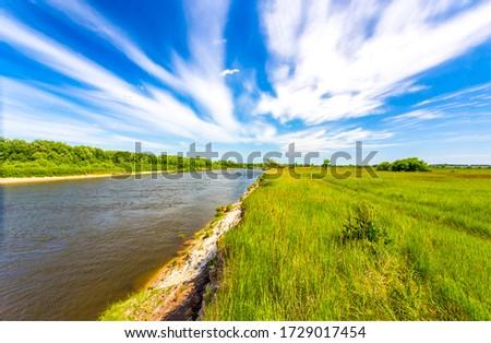 Summer rural river shore landscape